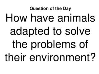 Question of the Day How have animals adapted to solve the problems of their environment