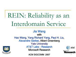REIN: Reliability as an Interdomain Service