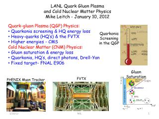 LANL  Quark Gluon Plasma and Cold Nuclear Matter Physics Mike  Leitch  - January 10, 2012