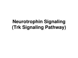 Neurotrophin Signaling (Trk Signaling Pathway)
