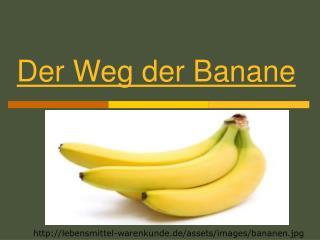 Der Weg der Banane