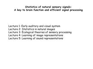 Statistics of natural sensory signals: A key to brain function and efficient signal processing