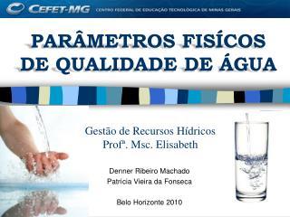 Gestão de Recursos Hídricos  Profª. Msc. Elisabeth