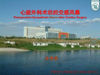 心脏外科术后的交感风暴 Postoperative Sympathetic  Storm  after Cardiac Surgery