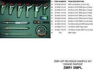 ZMR HIP REVISION SAMPLE KIT  *GRAND RAPIDS* ZMR1 SMPL