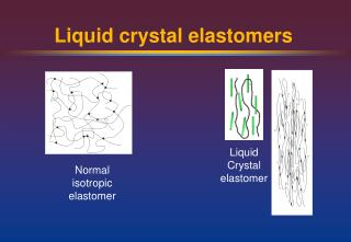 Liquid crystal elastomers