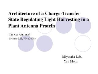 Architecture of a Charge-Transfer State Regulating Light Harvesting in a Plant Antenna Protein