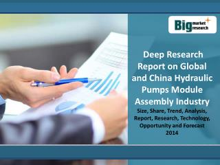 Deep Research Report on Global and China Hydraulic Pumps Module Assembly  Industry