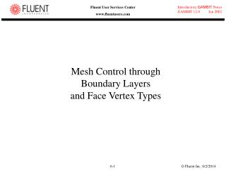 Mesh Control through Boundary Layers and Face Vertex Types