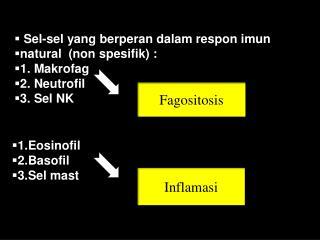 Sel-sel yang berperan dalam respon imun  natural   (non spesifik)  : 1. Makrofag 2. Neutrofil