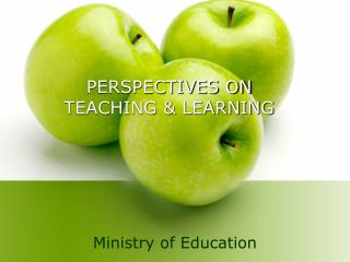 PERSPECTIVES ON  TEACHING & LEARNING