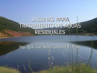 LAGUNAS PARA TRATAMIENTO DE AGUAS RESIDUALES