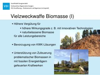 Vielzweckwaffe Biomasse (I)