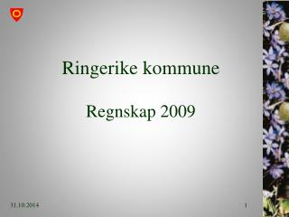 Ringerike kommune Regnskap 2009