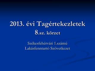 2013. évi Tagértekezletek 8 .sz. körzet