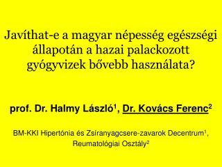 Javíthat-e a magyar népesség egészségi állapotán a hazai palackozott gyógyvizek bővebb használata?