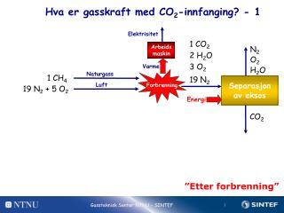 Hva er gasskraft med  CO 2 -innfanging? - 1