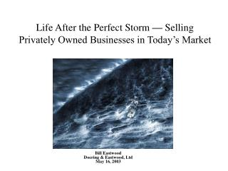Life After the Perfect Storm  —  Selling Privately Owned Businesses in Today's Market