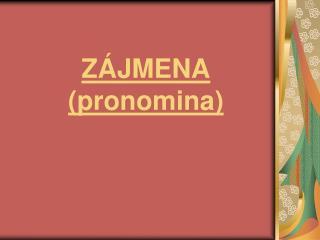 ZÁJMENA (pronomina)