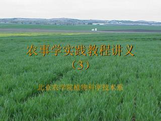 农事学实践教程讲义 ( 3 )
