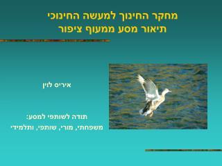 מחקר החינוך למעשה החינוכי תיאור מסע ממעוף ציפור