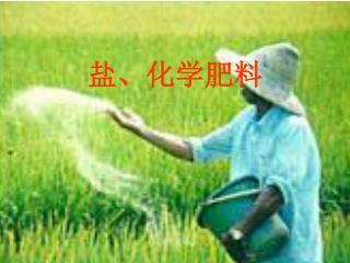 盐、化学肥料