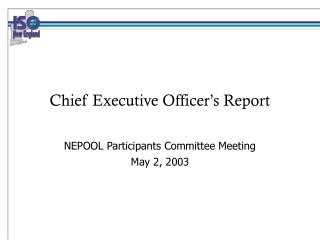 Chief Executive Officer's Report