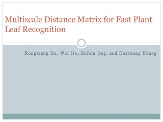 Multiscale  Distance Matrix for Fast Plant Leaf Recognition