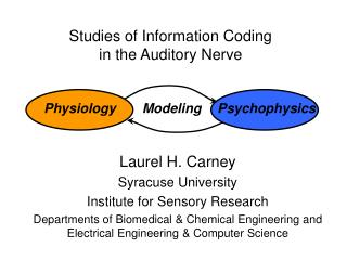 Studies of Information Coding  in the Auditory Nerve