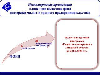 Некоммерческая организация  «Липецкий областной фонд