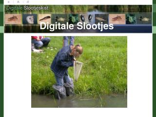 Digitale Slootjes