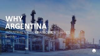 BRAZILIAN TAX REGIMES ON OIL  GAS INDUSTRY