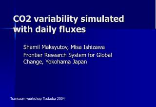 CO2 variability simulated with daily fluxes