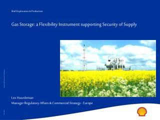 Gas Storage: a Flexibility Instrument supporting Security of Supply