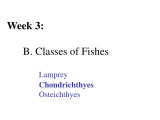 Week 3: 	B. Classes of Fishes Lamprey Chondrichthyes 		Osteichthyes