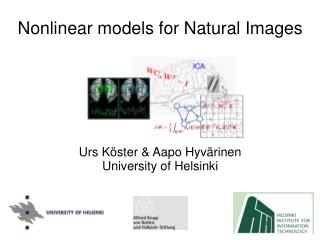 Nonlinear models for Natural Images