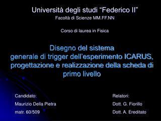 """Università degli studi """"Federico II"""" Facoltà di Scienze MM.FF.NN Corso di laurea in Fisica"""