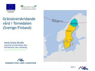 Gränsöverskridande vård i Tornedalen (Sverige/Finland)