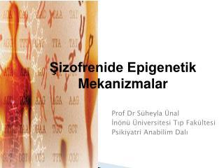 Prof Dr Süheyla Ünal İnönü Üniversitesi Tıp Fakültesi Psikiyatri Anabilim Dalı