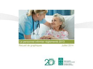 Le personnel infirmier réglementé  2013