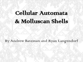 Cellular Automata  & Molluscan Shells