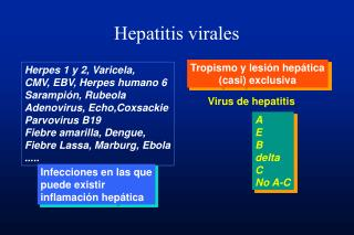Hepatitis virales