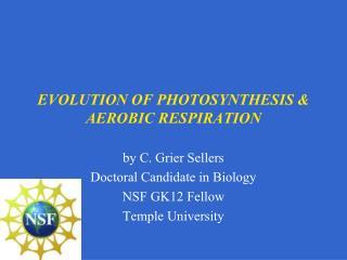 EVOLUTION OF PHOTOSYNTHESIS  AEROBIC RESPIRATION