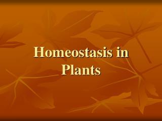 Homeostasis in Plants