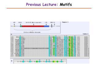 Previous Lecture:  Motifs