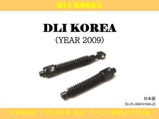 DLI KOREA (YEAR 2009)
