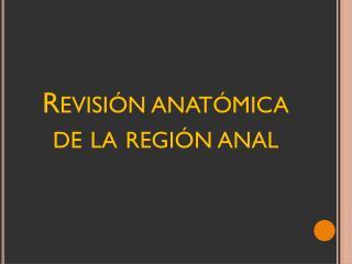 Revisión anatómica de la región anal