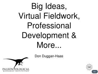 Big Ideas, Virtual Fieldwork, Professional Development & More...