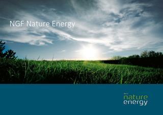 Hvem er NGF Nature Energy Månsson?