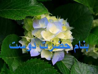 بنام حضرت دوست
